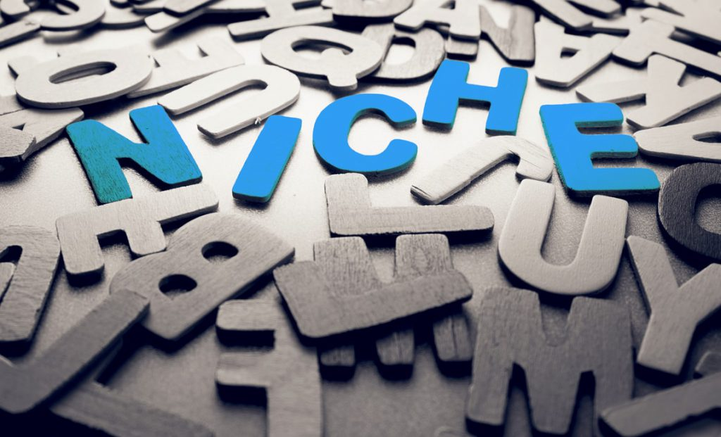 What is a Niche Marketing Strategy? Finding Your Niche!