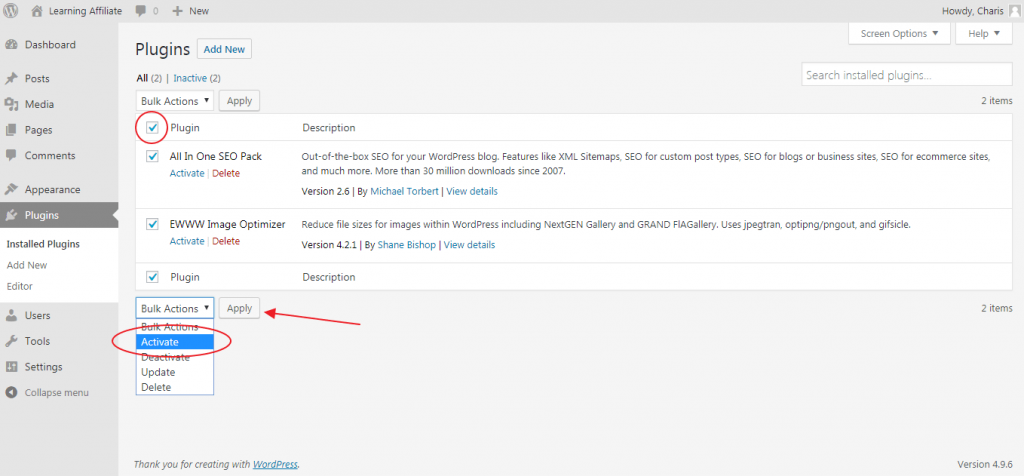 Activate WordPress Plugins
