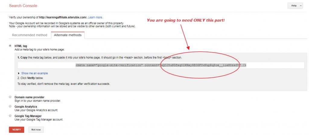 Google search console verification