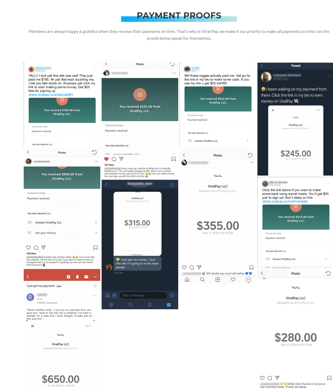 Viral Pay Proof of Payments