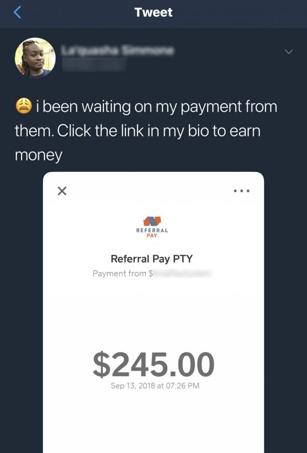 Viral Dollars Fake Payment Proof 2