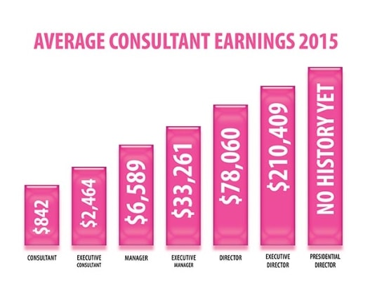 Pink Zebra Income Report 2015