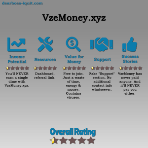 VzeMoney.xyz Review: 9 Signs You Are Being SCAMMED By It!