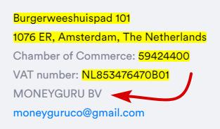 MoneyGuru.co Company Info