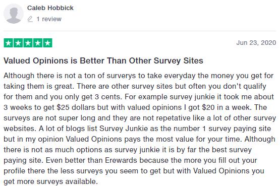 ValuedOpinions Positive Trustpilot Testimonial 4