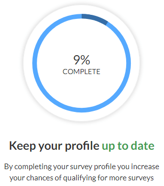 ValuedOpinions Profile Completion Percentage