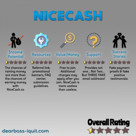 NiceCash.co Review Featured Image